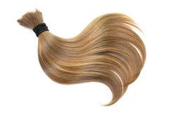 Krul van natuurlijk bruin die haar, op witte achtergrond wordt geïsoleerd Paardestaart dichte omhooggaand stock foto