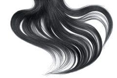 Krul van natuurlijk zwart haar op witte achtergrond royalty-vrije stock fotografie