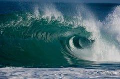 krullande enorm havwave Royaltyfria Bilder
