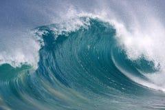 krullande wave Arkivfoton