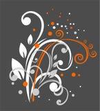 krullar orange white Royaltyfria Foton