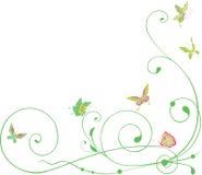 Krullen en vlinders Royalty-vrije Stock Foto's