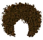 In krullend donker bruin haar Realistische 3d sferische haren Royalty-vrije Stock Foto