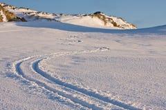 Krullend spoor van skis stock afbeelding