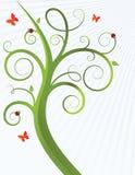Krullende boom met lieveheersbeestjes Stock Foto