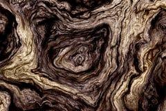 Krullende houten textuur Stock Foto