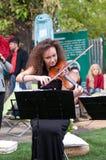 Krullende viool Stock Foto