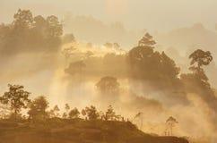 Krungshing雾雾观点海  免版税图库摄影