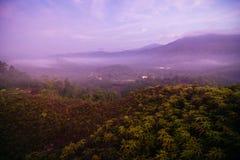 Krungshing雾雾观点海  库存图片