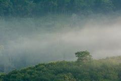 Krungshing fog view point/ sea of fog. At Noppitam, Nakhon Si Thammarat, Thailand Stock Photography