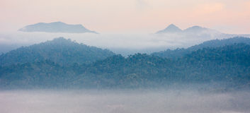 Krungshing fog view point/ sea of fog Royalty Free Stock Images