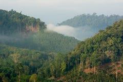 Krungshing fog view point/ sea of fog. At Noppitam, Nakhon Si Thammarat, Thailand Stock Image