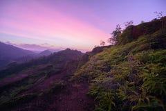 Krungshing-Nebel-Ansichtpunktnebelmeer Stockfotos