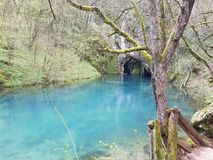 The Krupaj springs , an ecological oasis. Surrounded by a forest of its own, with tree branches and vines hovering over its surface, stands the Krupaj springs Stock Photos