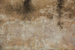 Krupiasta betonowa ściana Fotografia Stock