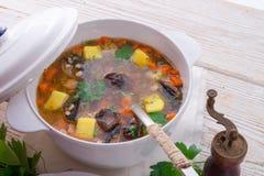 Krupnik - польский суп ячменя жемчуга Стоковые Фото