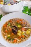 Krupnik - польский суп ячменя жемчуга Стоковые Изображения RF