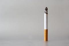 kruponu papierosowy zbliżenia fotografii biel Obrazy Stock