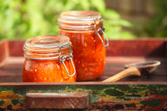 Krus av hem- gjord klassisk kryddig tomatsalsa Arkivbilder