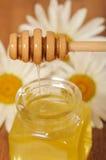 Krus av honung och en sked av honung Fotografering för Bildbyråer