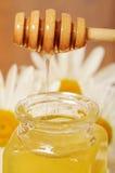 Krus av honung och en sked av honung Royaltyfri Bild