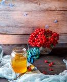 Krus av honung och viburnumen på träbakgrund Royaltyfri Foto
