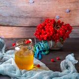 Krus av honung och viburnumen på träbakgrund Arkivfoton