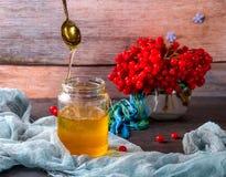 Krus av honung och viburnumen på träbakgrund Arkivbild