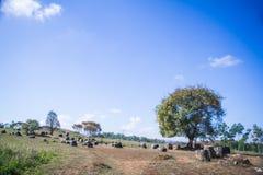 Krus av Laos Arkivbilder