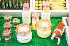 Krus och flaskor av mejeriprodukter och frö arkivbild