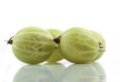 Krusbärfrukt Royaltyfri Fotografi