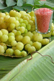 Krusbärfrukt Arkivfoton