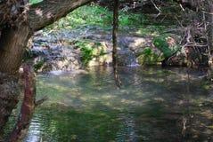 Krushuna的瀑布 免版税库存照片