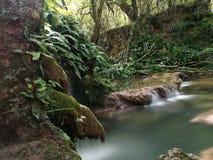 Krushuna vattenfallBulgarien nära Lovech Royaltyfria Foton