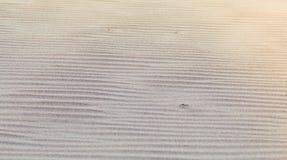 Krusig Sand Arkivfoton