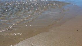 Krusigt grunt vatten och strand arkivfilmer