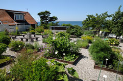 Krusmyntagarden in Gotland Royalty Free Stock Image