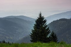 Krusne hory, CZ, EU Royalty Free Stock Photography