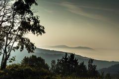 Krusne hory, CZ, UE Imagens de Stock Royalty Free