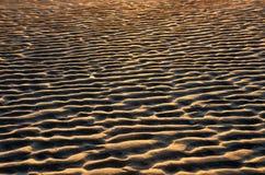 Krusningar av sand på stranden Royaltyfri Fotografi