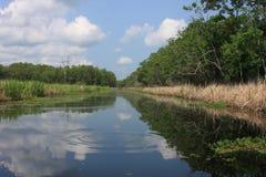 Krusningar i flodarmen Arkivbild