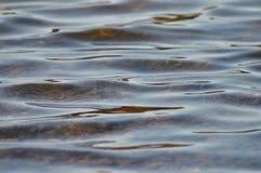 Krusningar i vatten Royaltyfri Foto