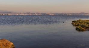 Krusningar på havet Arkivfoto