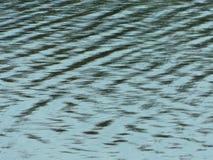 Krusningar på sjön under solen Arkivfoto