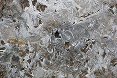 Kruste des Eises auf einer Pfütze von Blättern Stockfotografie