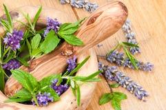 Kräuter u. Lavendel Stockfotografie