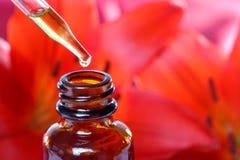 Kräutermedizin-Tropfenzähler-Flasche mit Blumen Stockbild