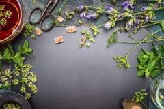 Kräuterteevorbereitung mit frischen Kräutern und Blumen auf schwarzem Tafelhintergrund, Draufsicht Lizenzfreies Stockbild