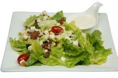 Krutonger för Caesar sallad, bacon, parmesanost och Caesar dres Arkivfoto