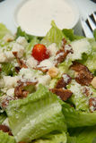 Krutonger för Caesar sallad, bacon, parmesanost och Caesar dres Royaltyfria Bilder